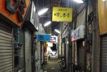Интенсив-курс в Японии 2014. Яманаси додзе. День 8. Змея в додзё